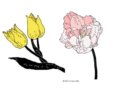 tulip_black