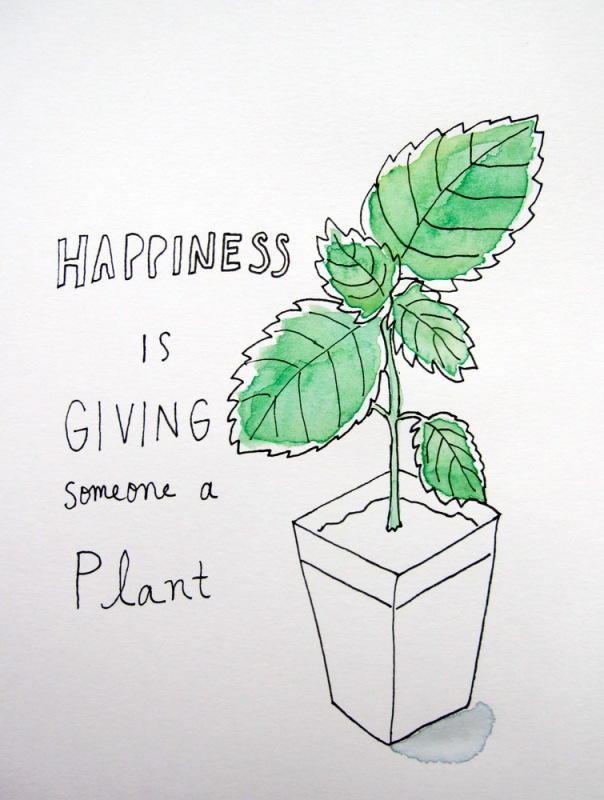 plant giving
