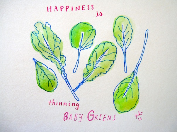 Happiness is thinning baby greens.  a.k.a. gourmet salad!