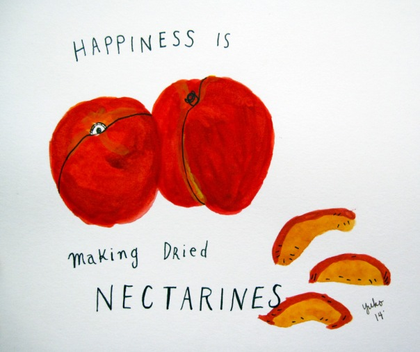 Happiness is making dried nectarines.  It smells so good!