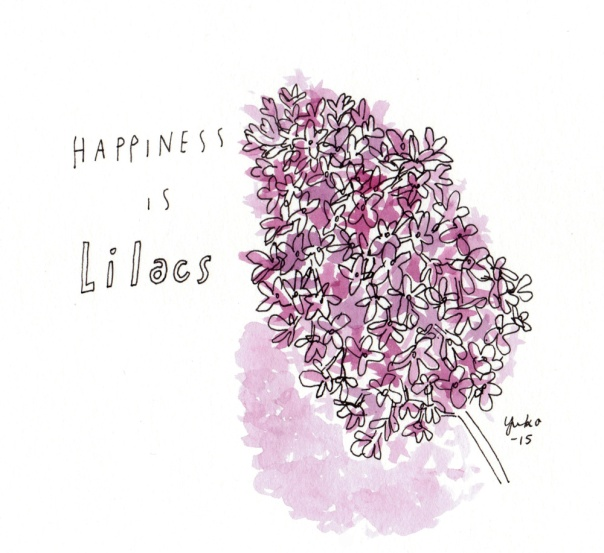 Happiness is lilacs.  It smells SO nice <3