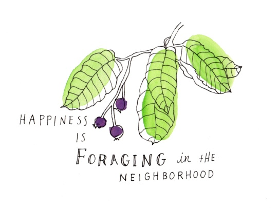 foraging-scan_lores