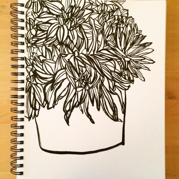 dahlia-sketch_lores