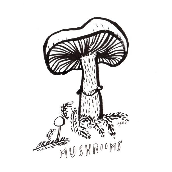 mushrooms_lores