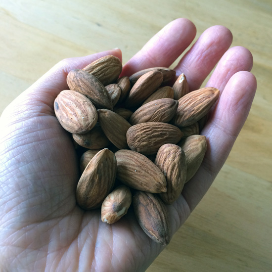 Almonds-in-hand_lores