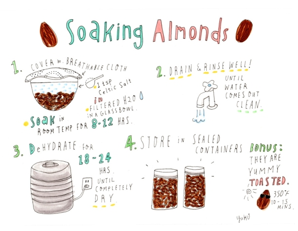 soaking-almonds_lores_cropped