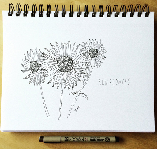 Sunflowers_lores