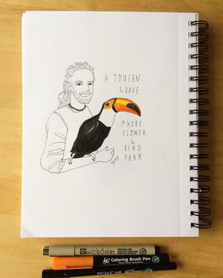 Toucan_lores