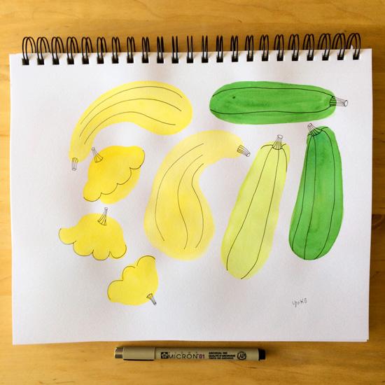 Watercolor-squash_lores