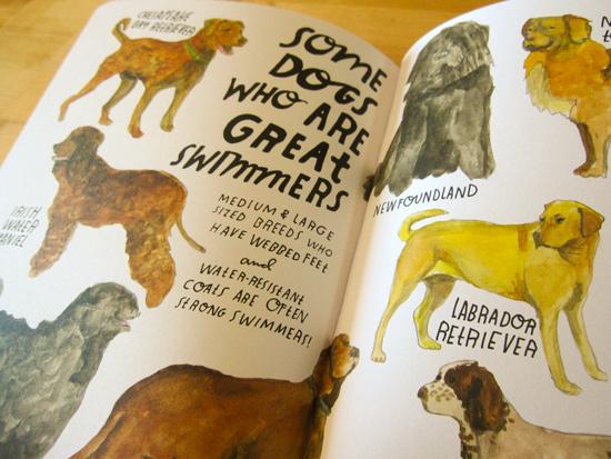 Lisa-Congdon-The-Swimming-Book-Dog-Breeds