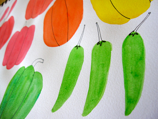 Peppers Watercolor Illustration