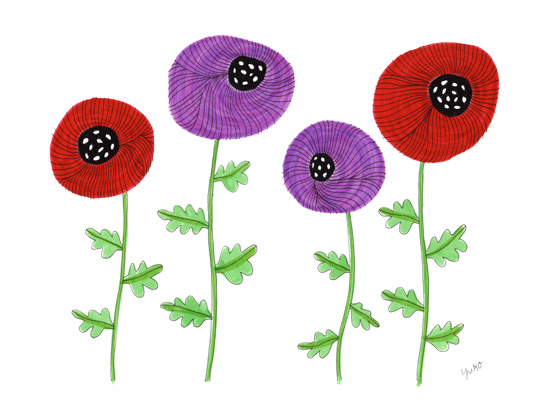 Purple-and-Red-Poppy-Illustration_lores