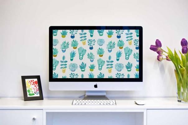 blue-succulent-desktop-mockup_1000px