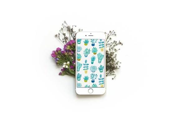 blue-succulent-smartphone-mockup_1000px
